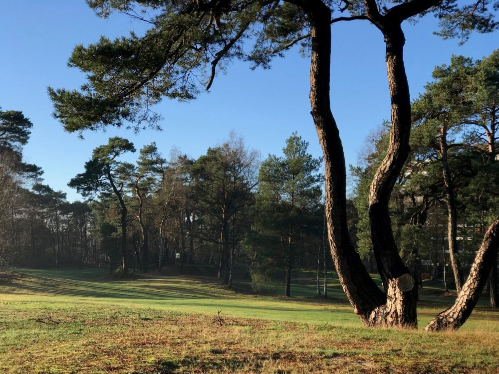 Golf en country club De Biltse Duinen